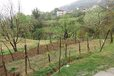 Land For Sale Surreal Area, Tirane Tirane Albania -