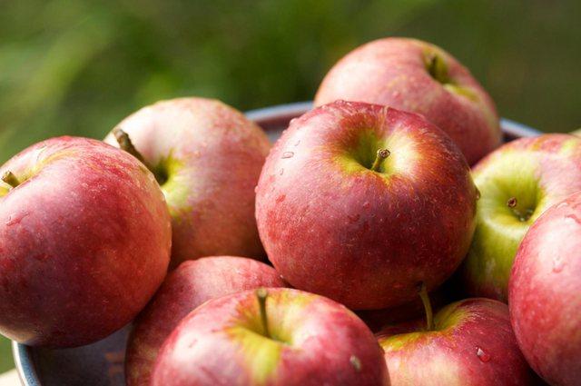 Hani gjithmonë një mollë para gjumit. Ja pse!