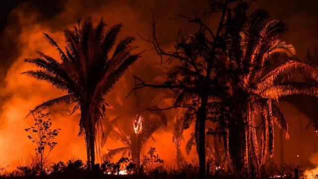 Jepet alarmi/ Zjarret në Amazonë në qershor, më të