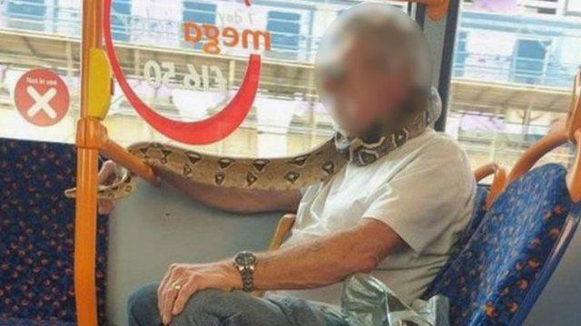 Një udhëtar në autobus përdor gjarprin si maskë
