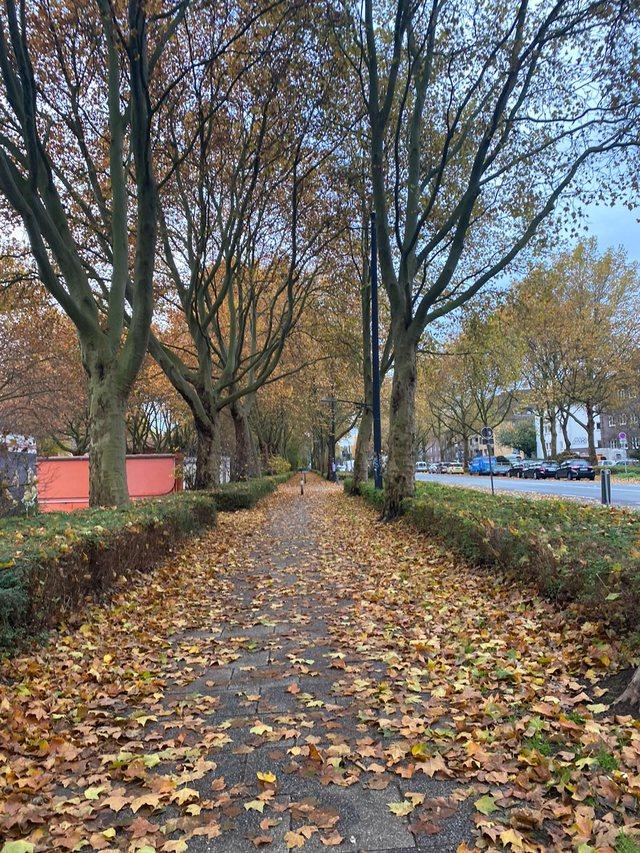 Infermierja shqiptare në Bremen: Ju tregoj situatën në spitalet
