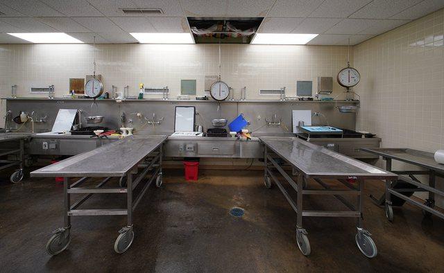 Kufomat brenda morgut në tokë, reagon Instituti i Mjekësisë
