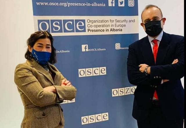 OSBE/ODIHR në Shqipëri: Qeveritë të garantojnë