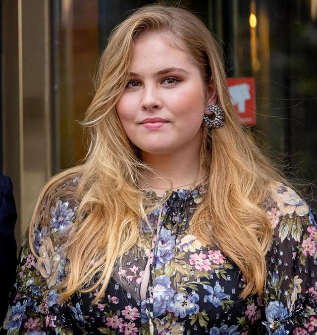 Princesha e Holandës refuzon pagesën 1.6 milionë dollarëshe: