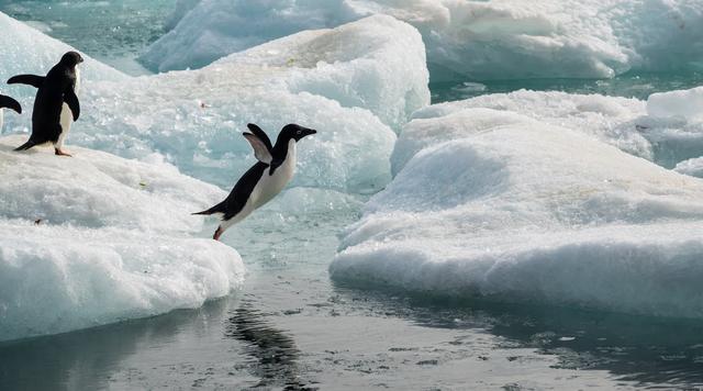 Antarktida po ndryshon. Ja se çfarë tregon fotografja e