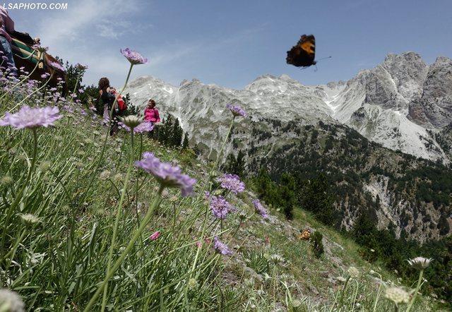 Turistët sfidojnë terrenin e vështirë, zgjedhin të