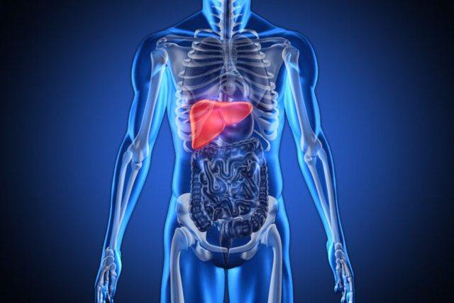 Këto 4 shenja tregojnë se keni probleme me mëlçinë!