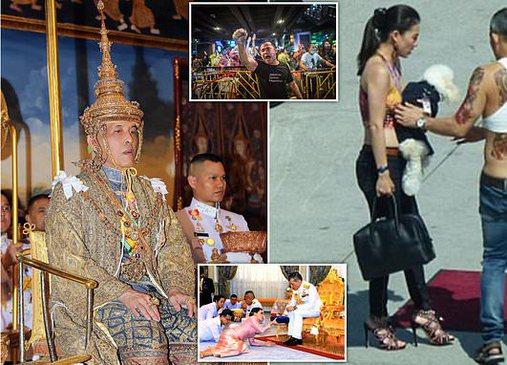 Me 30 mld euro pasuri, 4 gra dhe qenin Komandat të FA/ Tailandezët