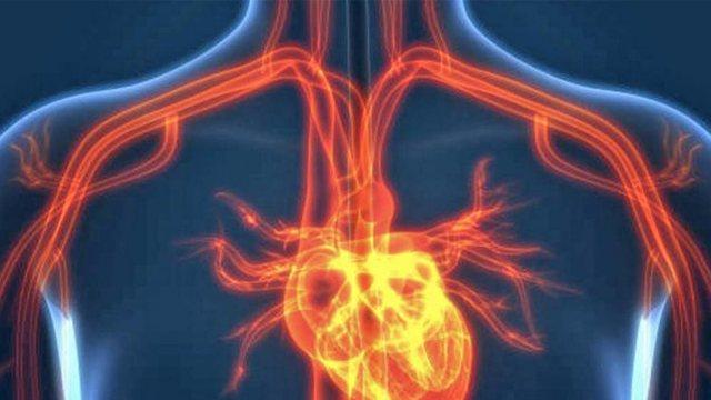 Temperaturat dhe sëmundjet e zemrës/ Ndiqni këshillat e