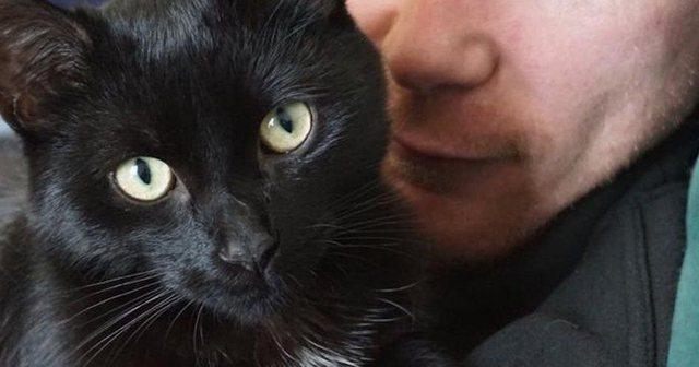 Vrau 9 mace me thikë! Burri dënohet me 5 vite burg