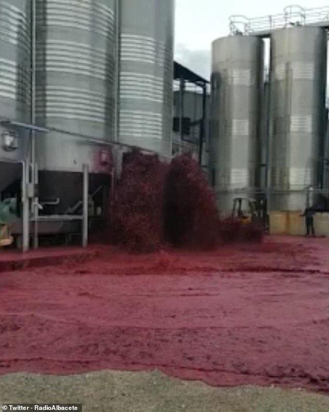 VIDEO/ Përmbytje me verë të kuqe, momenti shokues kur