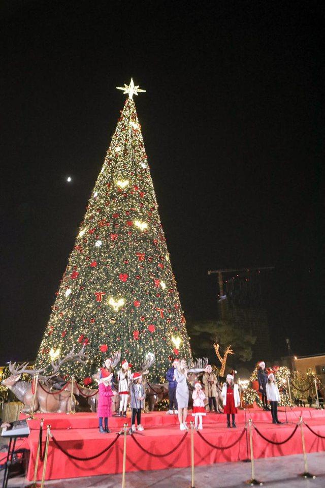 FOTO/ Mes COVID e festave, Tirana ndez dritat e pemës së Vitit të