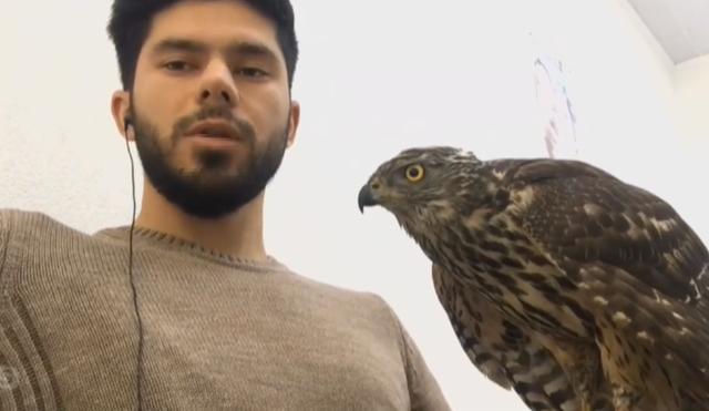 Njihuni me Taulant Berishën, djalin shqiptar që jeton me shqiponja e