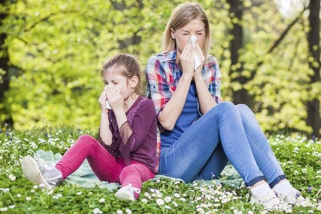 Pranvera vjen me alergji e sëmundje, ja çfarë i ndodh trupit