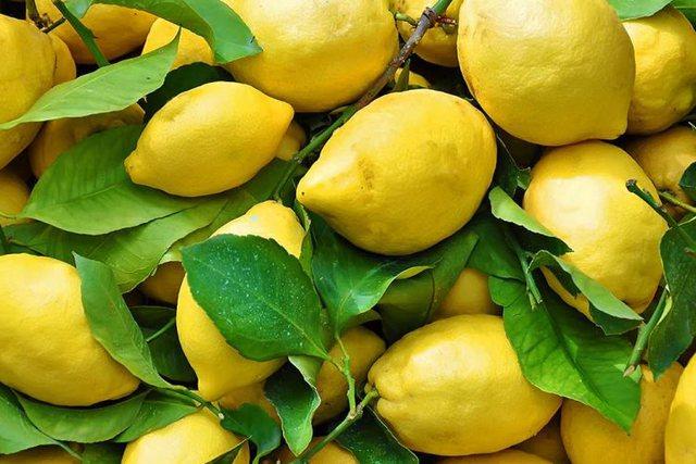 Lëkura e Limonit – Shumë Përdorime e vlera fantastike