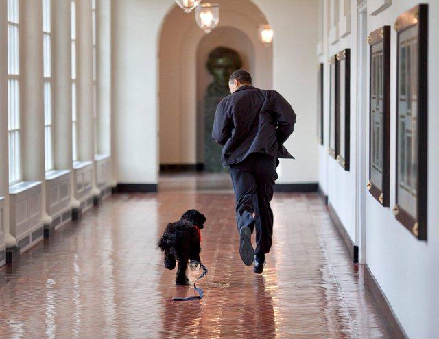 Barack Obama vajton për humbjen e pjesëtarit të familjes