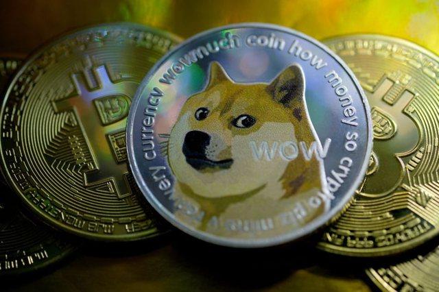 Dogecoin: Shakaja më e shtrenjtë e botës