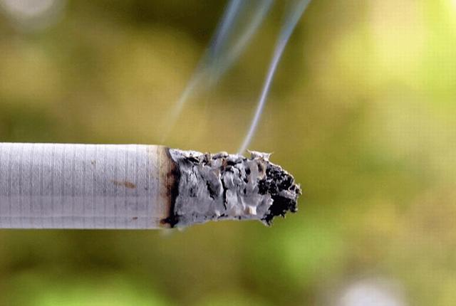 Çfarë ka në të vërtetë brenda një cigareje?