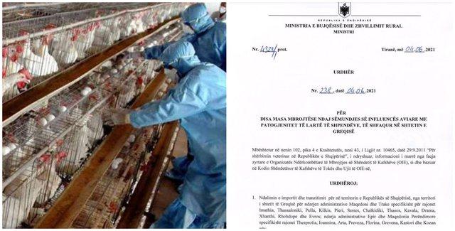 Gripi i Shpendëve/ Ministrja e Bujqësisë nxjerr urdhrat: Shtetet