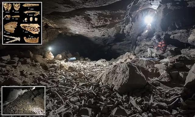 Arkeologët shohin llahtar me sy në shpellën e Arabisë