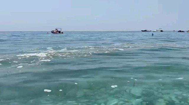 Alarmi/ Kroçerat kthejnë në tualet plazhet shqiptare, hedhin pa