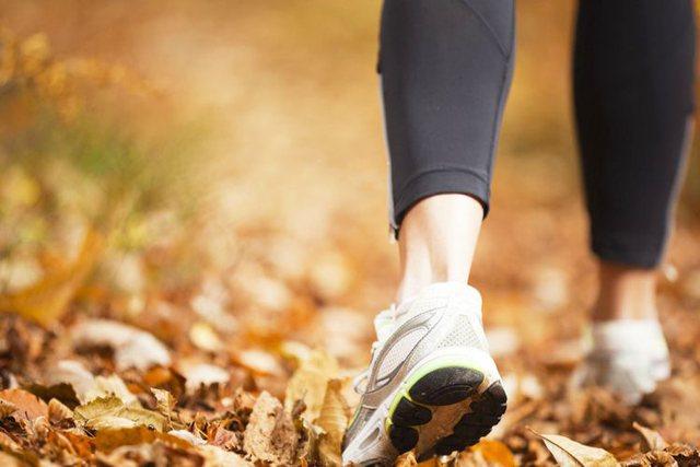 Sa hapa duhet të bëni në ditë për shëndet të
