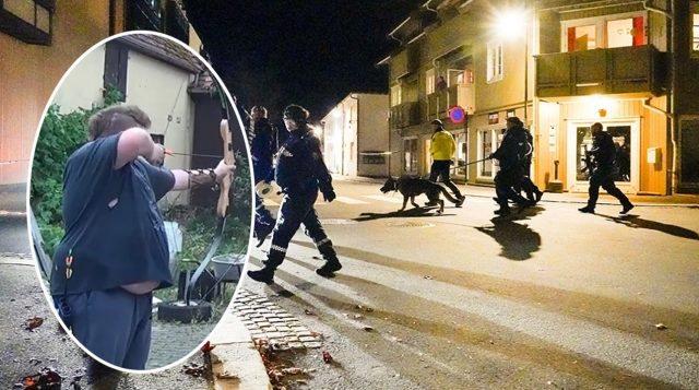 Vrau 5 persona me shigjeta, ky është autori i sulmit në Norvegji
