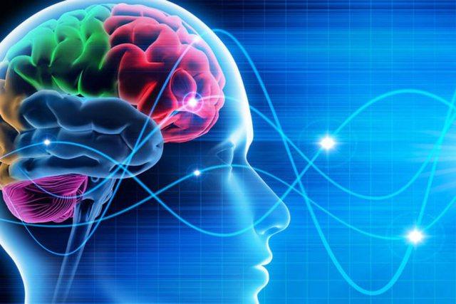 Njihuni me ndikimin e mbipeshës në plakjen e trurit