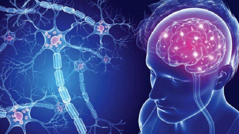 Skleroza e shumëfishtë/ Zbuloni si ndikon vitamina D te mbrojtja e