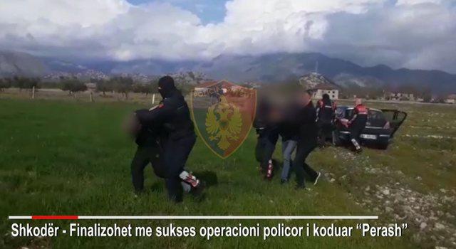 Drogë, mijëra fara kanabisi dhe armë zjarri, 4 të arrestuar