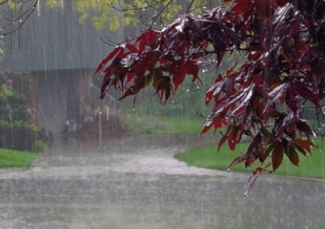Mot i keq me shtrëngata në verë, reshjet e dendura të shiut