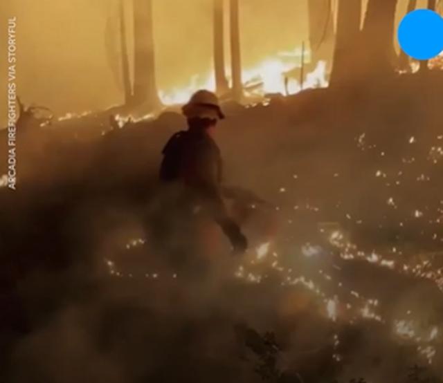 SHBA nën pushtetin e zjarrit, digjen 1 milionë hektarë,
