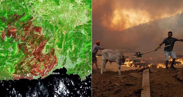 """""""Njollë gjigande"""", pamjet nga sateliti që tregojnë"""