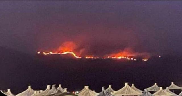 Emrat/ I vendosën zjarrin pyjeve në Vlorë, policia arreston tre