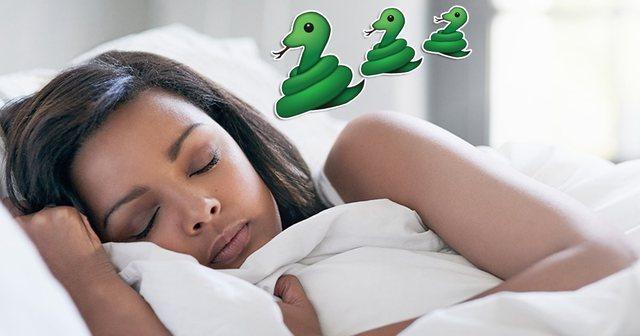 Shihni gjarpërinj në ëndërr? Ja çfarë duhet