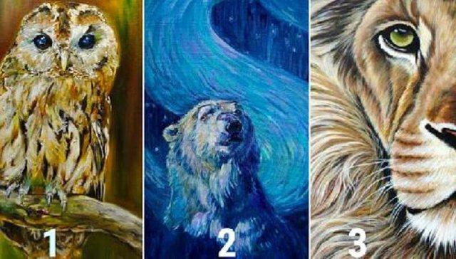 Zgjidhni një kafshë dhe zbuloni çfarë mund të