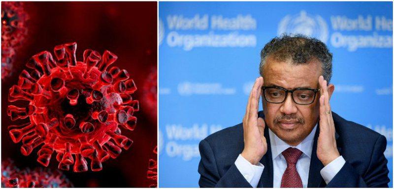 Pandemia/ Kreu i OBSH paralajmëron njerëzimin: Më e keqja nuk ka