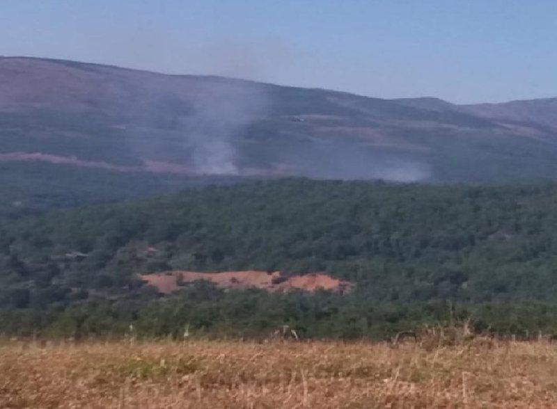Temperaturat e larta, dy vatra të mëdha zjarri në pyjet e