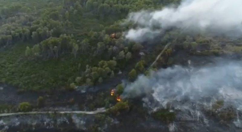 Vazhdon përhapja e zjarrit të madh në pyllin e Semanit, në