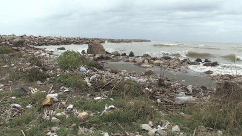 Drini mbushet me plehra/ Reshjet mblodhën të gjitha mbeturinat e