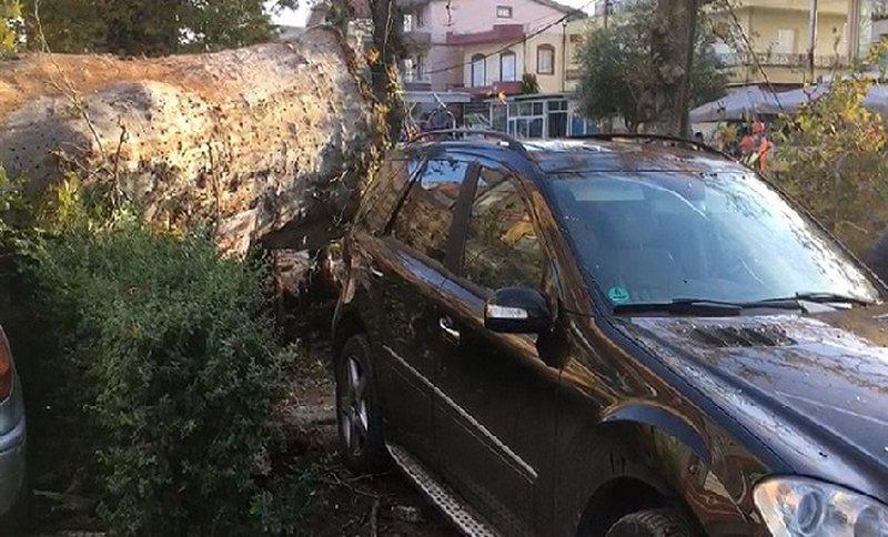Fier, rrëzohet rrapi shekullor, dëmtohen 4 makina