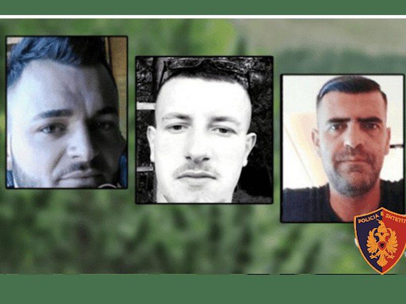 Zhdukja e tre të rinjve në Malësinë e Madhe, gazetarja: U