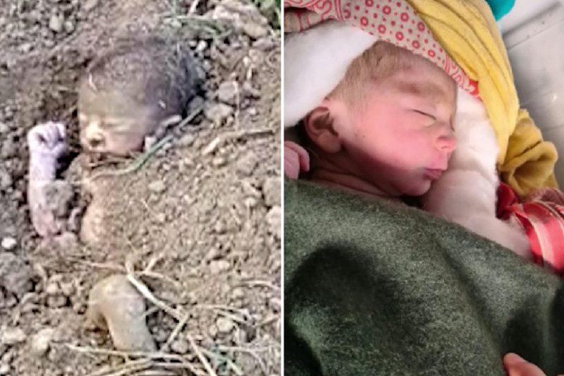 U varros e gjallë në fushat e një ferme, bebja shpëton