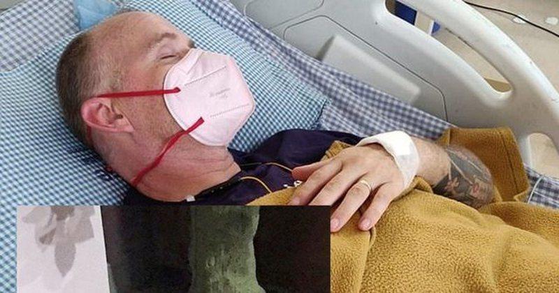 I prekur me Covid kafshohet nga kobra, mbetet i verbuar dhe i paralizuar