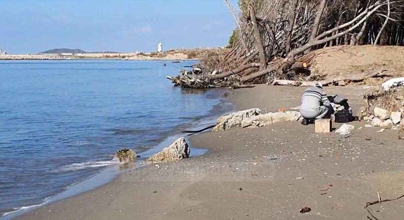 Pishat përfundojnë në det/ Erozioni kërcënon brigjet e