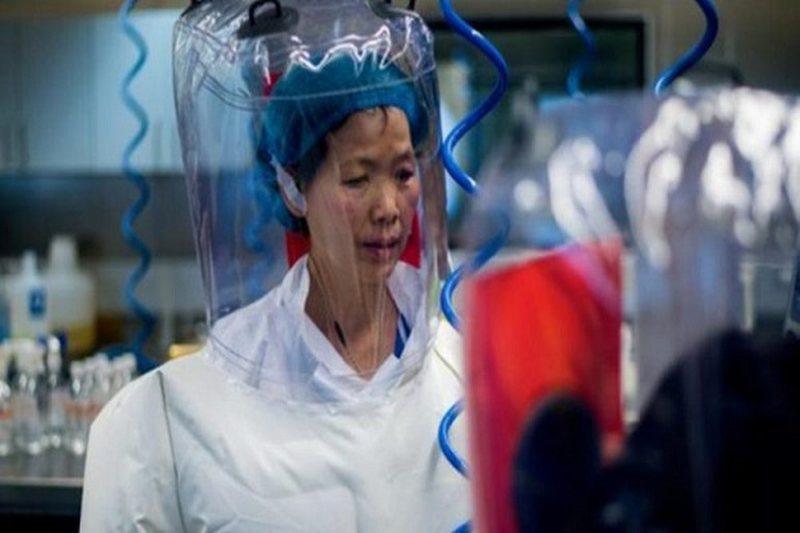 Paralajmëron virologia kineze e cila zbuloi e para koronavirusin: Pandemi