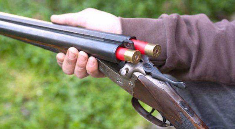 Kush ka armë gjahu duhet të indetifikohet, zbulohet plani i masave