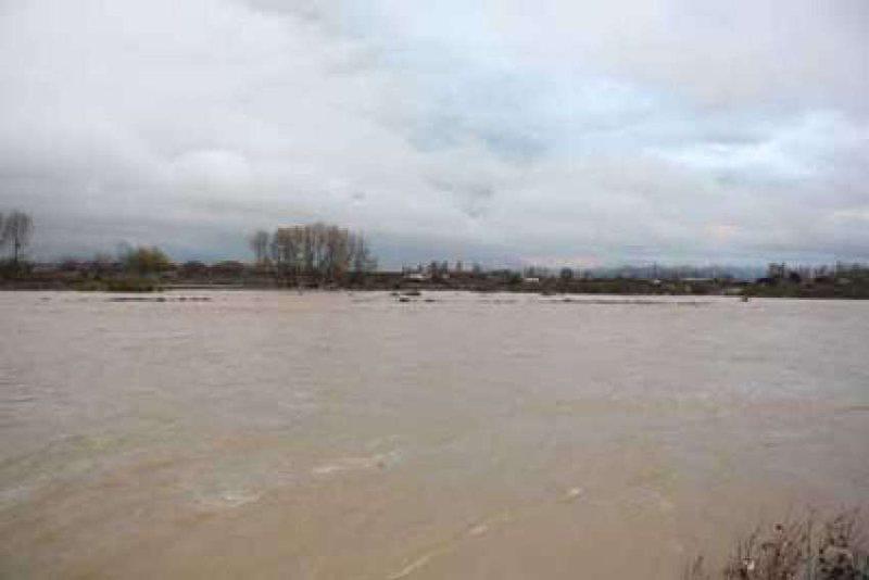 Shkodra ende nën ujë, lumi Drin vijon gërryerjen e tokës