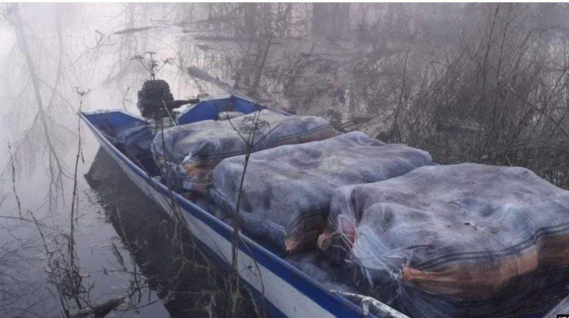 Policia malazeze sekuestron mbi 220 kg marijuanë në liqenin e