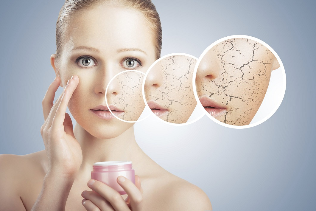 Face creams for dry skin
